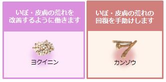 koikura-04