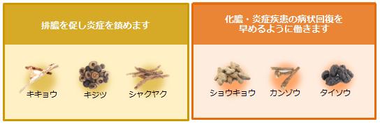 wagurasu-05